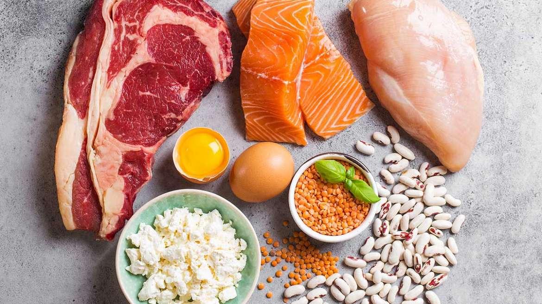 Proteína animal y proteína vegetal ¿en qué se diferencian?